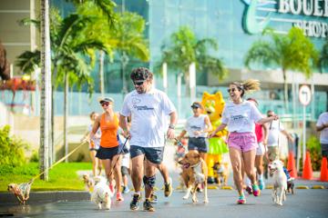 2ª Correndo pra Cachorro 2016 - Vila Velha