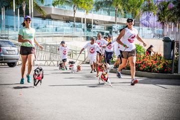 3ª Correndo pra Cachorro 2017 - Vila Velha
